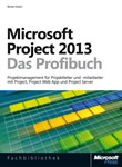 MS Project 2013 – Das Profibuch